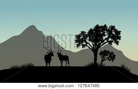 Silhouette of antelope in hills with mountain backgrounds