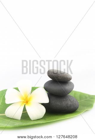 Zen stones with frangipani flower on white