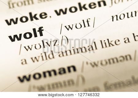 Close Up Of Old English Dictionary Page With Word Wolf.