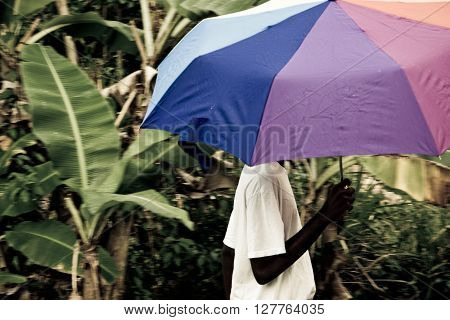 male with umbrella walks in the warm rain of the caribbean