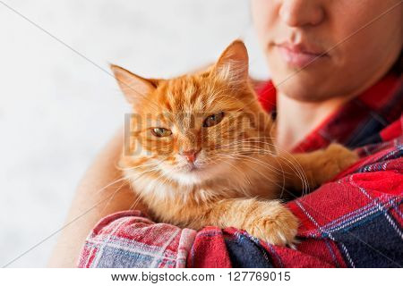 Man in red plaid tartan shirt holding an arrogant ginger cat.