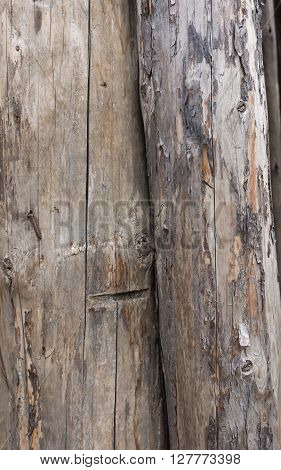 Several old cracked darkened logs without bark