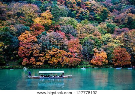 Kyoto Japan - NOV 23 2012: Traditional tourist boat pass on the emerald color Katsura river along the beautiful autumn leaves in the cold tone Arashiyama Kyoto Japan