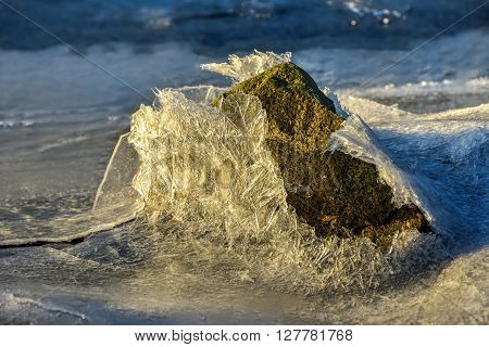 Rock cracking through the ice in Vagspollen in the Lofoten Islands Norway in the winter. poster
