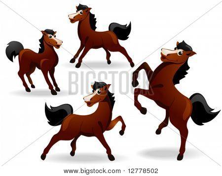 Horse - Vector