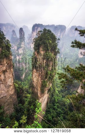 Tall Mountain Peaks Of Yuanjiajie