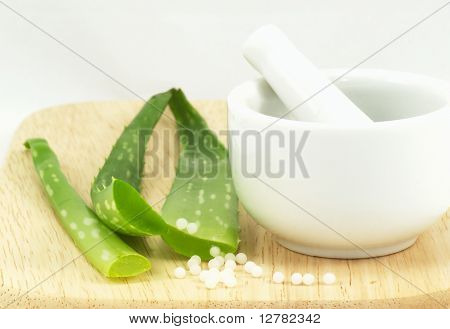 Aloe and mortar