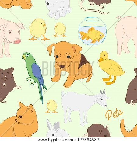 Animals pets vector colorful pattern. Illustrations of various domestic animals - dog, cat, parrot, fish, pig, bunny and other