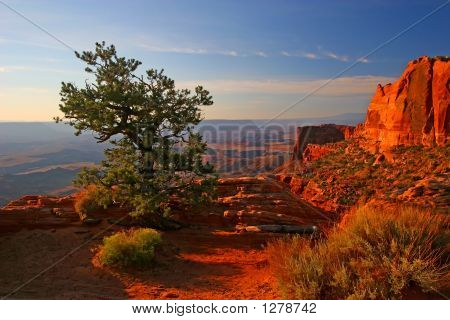 Sunrise In Canyonlands