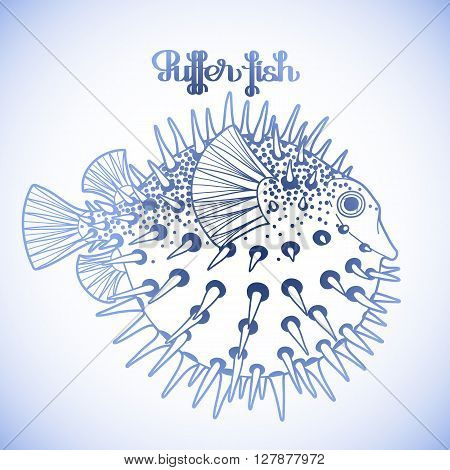 Graphic puffer fish isolated on white background. Sea hedgehog. Sea and ocean creature in blue colors. Vector element for seafood menu. Coloring book page design