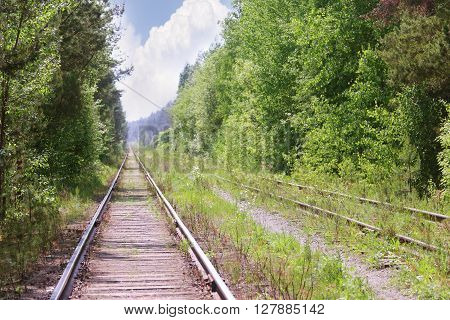 Old rusty railway among green trees at summer sunny day outlook