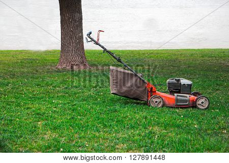Lawnmower on grass in the garden, tree and white wall on background, a lot of space for text. Motor scythe on lawn side view.