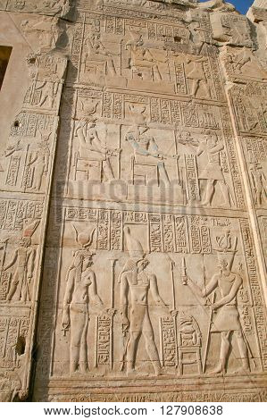 stone wall of Egyptian Kom Ombo Temple with carving figures and hieroglyphs with ceremony people priest pharaoh or king goddess or queen in Egypt Africa