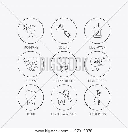 Tooth, stomatology and toothache icons. Mouthwash, dental pliers and diagnostics linear signs. Dentinal tubules, drilling icons. Linear colored in circle edge icons.