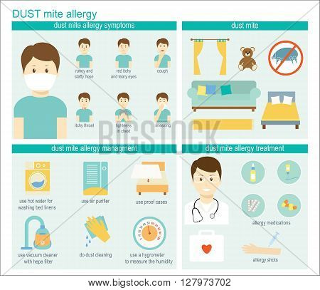 Dust mite allergy infographic: information symptoms management and treatment. Vector illustration