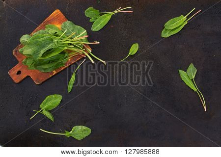 Fresh leaves of sorrel on cutting board on a dark metallic background. blackout photo