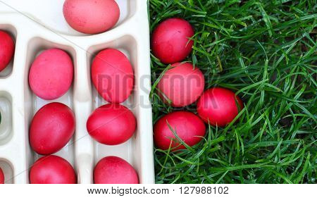 picture of an easter eggs. holiday concept