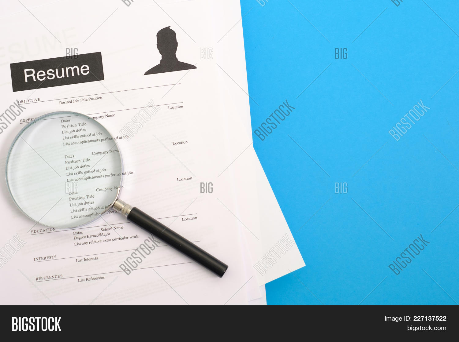Job Search Interview Image & Photo (Free Trial)   Bigstock