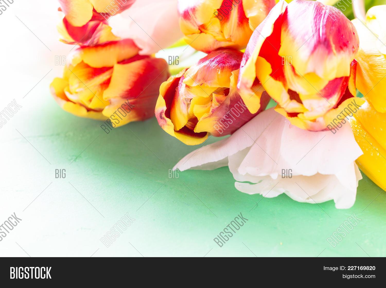 Bouquet Tulip Flower Powerpoint Template Bouquet Tulip Flower