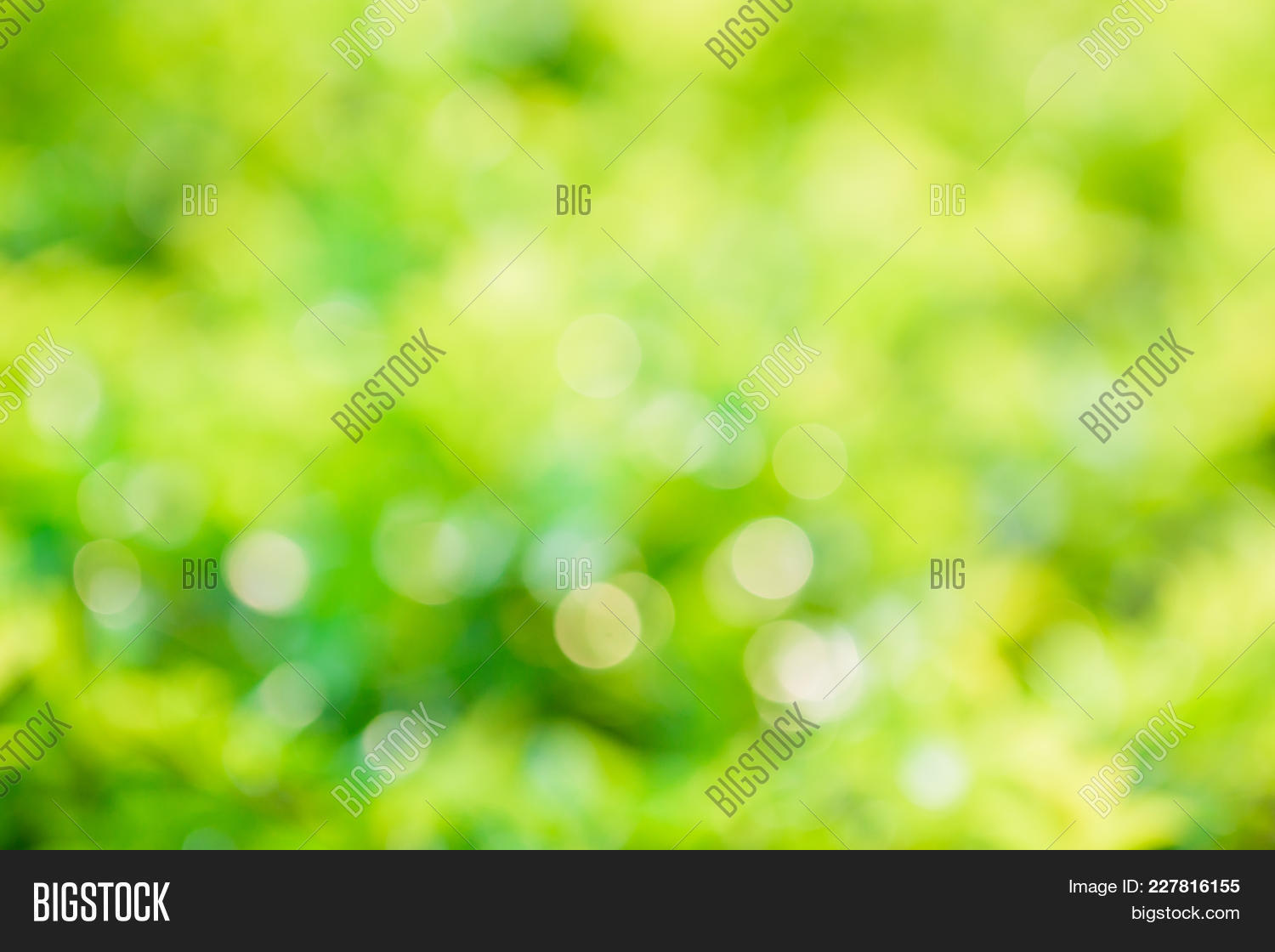 Best Nature Powerpoint Template Pictures Nature Powerpoint