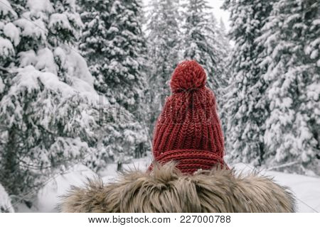 Rear view of backpacker woman standing in winter forest