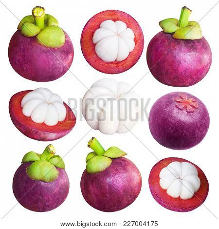 Delicious tropical mangosteen fruit isolated on white background with clipping mask. Tropical fruit with sweet juicy white segments of flesh inside a thick reddish-brown rind