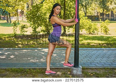 Slim Brunette Female Exercising With Fitness Trx Strips In A Park.