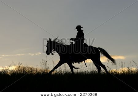 Cowboy Riding The Range At Dawn