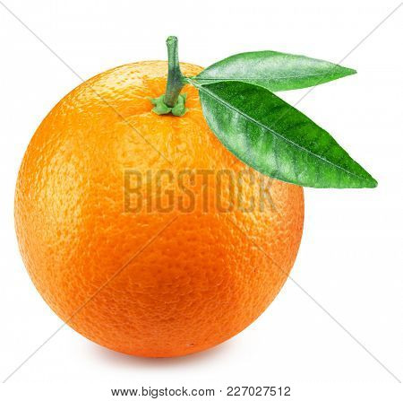 Ripe orange fruit with orange leaves. Clipping path.
