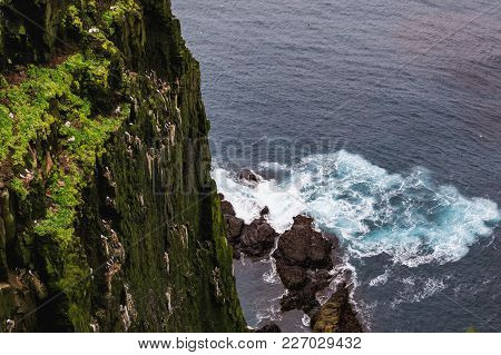 Stunning Latrabjarg Cliffs Europe S Largest Bird Cliff And Home To Millions Of Birds Including