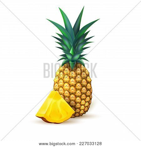 Pineapple Realistic Fruit With Slice. Vector Illustration. 3d Ripe Tropical Exotic Juicy Fresh Food,