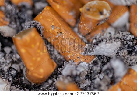 A Lot Of Cigarette Butts In An Ashtray