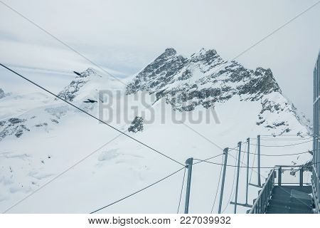 View From The Jungfrau Mountain Summit Towards The Aletsch Glacier. Bernese Oberland, Switzerland. S