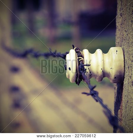 Detail Of The Border With Barbed Wire With Vintage Effect