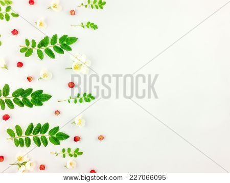 Colorful Bright Pattern Of Leaves, Berries And Flowers