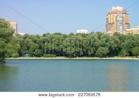 Image Of Many Summer In City Park