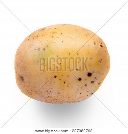 Potato Vegetable Isolated On White Background Isolation