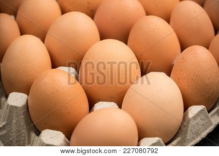 Brown Cage-free Chicken Eggs In Carton, Close Up