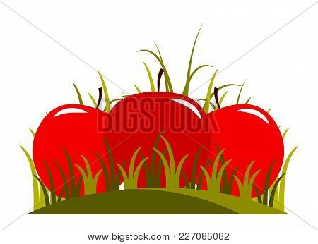 Vector Apples In Grass Isolated On White Background