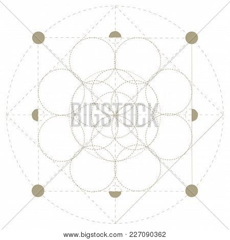 Vector Sacred Geometry Symbol: Seed Of Life, The Precursor Of The Flower Of Life Or The Pattern Of C