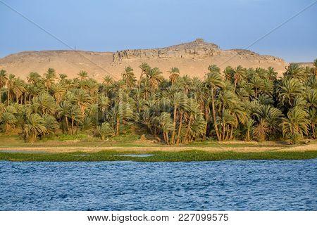 The River Nile, Palms, And Desert Egypt