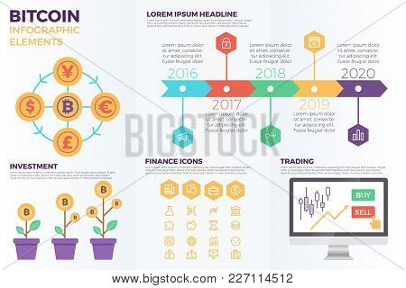 Bitcoin Cryptocurrency Infographic Elements