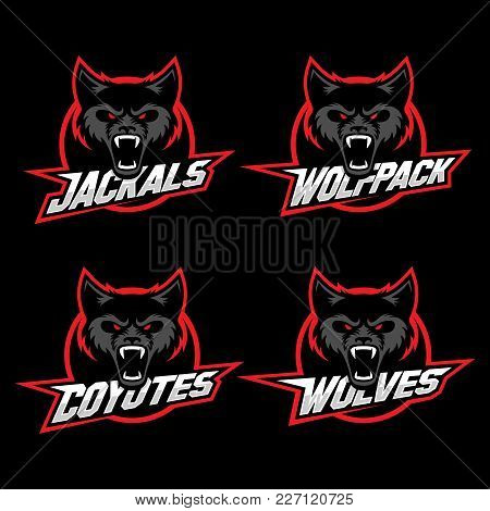 Wolf, Jackal And Coyote Mascots For A Sport Team. Vector Illustration.