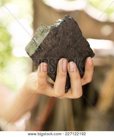 Black Coal For Shish Kebab In Hand .