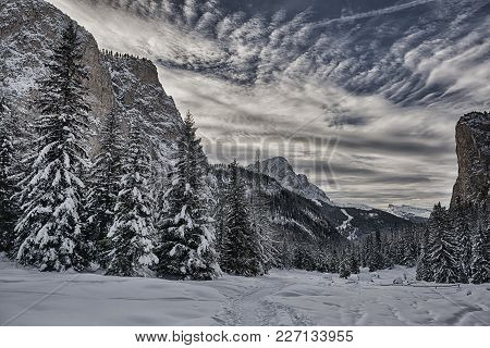 Snowy Forest In The Gardena Valley With Mountains, Sky And Clouds At The Horizon - Dolomiti, Italy
