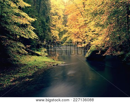 Autumnal Nature. Beautiful Autumn Forest With Mountain River And Colorful Trees With Green Red Yello