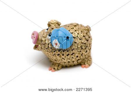 Golden Money Pig