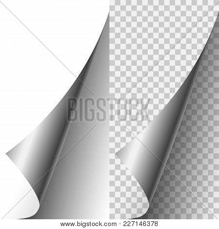 Vector Silver Metallic Realistic Paper Page Corner Curled Up. Paper Sheet Folded With Soft Shadows O