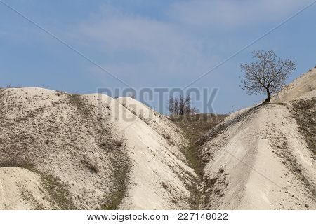 Hills With Limestone Minerals And Tree On The Top.