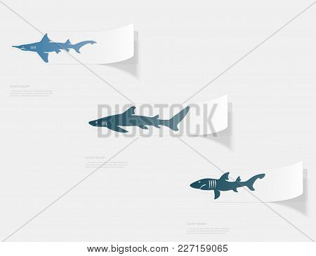 Shark. Flat Sticker With Shadow On White Background. Vector Illustration